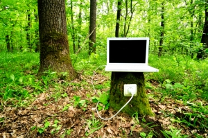 Laptop on stump